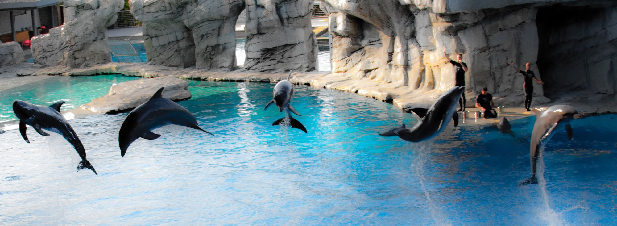 Les parcs d'attractions de la Riviera Romagnole